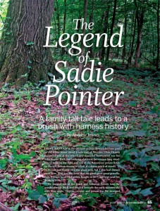 """The Legend of Sadie Pointer"" by Andrew Jenner can be read in the 2013 November issue of Hoofbeats magazine."