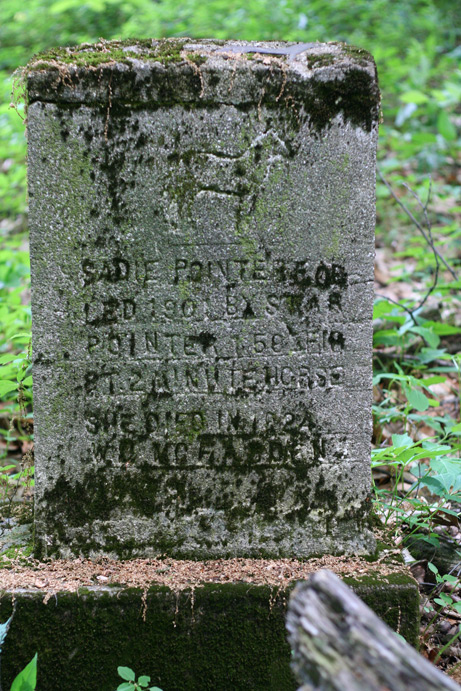 Gravestone for the horse, Sadie Pointer, sits in a woodlot on the private property of Ramseyer Farm. Photo courtesty of Andrew Jenner. Please do not trespass on private property looking for the gravestone.