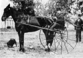 Pictured is an example of an old high-wheeled racing sulky. These types of sulkies were predominantly used in harness horse racing before the early 1890s.
